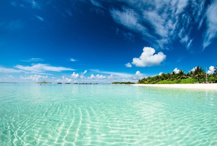 TOP 5 bãi biển đẹp nhất ở Florida không thể thiếu Bahia Honda